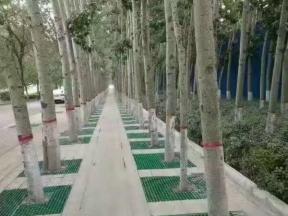 武汉市政护树格栅板厂家